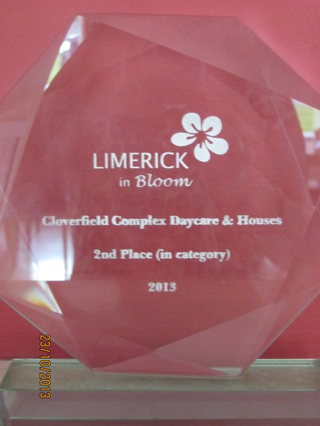 Glin Homes For The Elderly - 2nd Place (in category) - Limerick In Bloom 2013 - Trophy